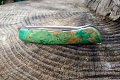 BIB'S EVO 1 loupe d'hetre teinté vert  N690 3mm, z20 (11)