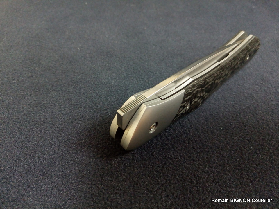BIBS EVO 2 mitre z40 et fibre de carbone Z20 N690 (12)