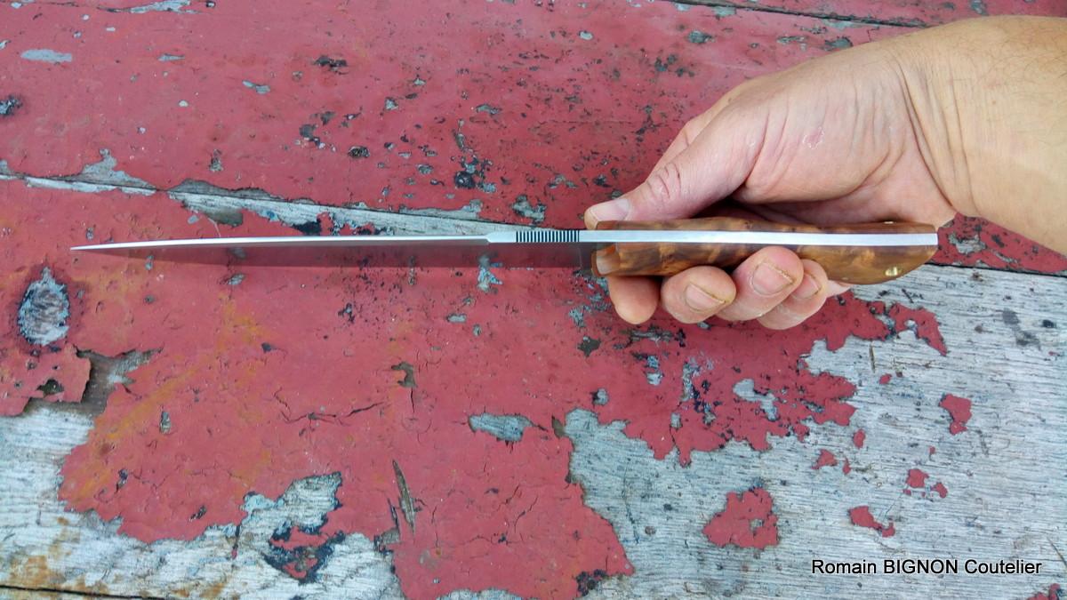 S-couteau droit 14C28N 4mm loupe de thuya (6)