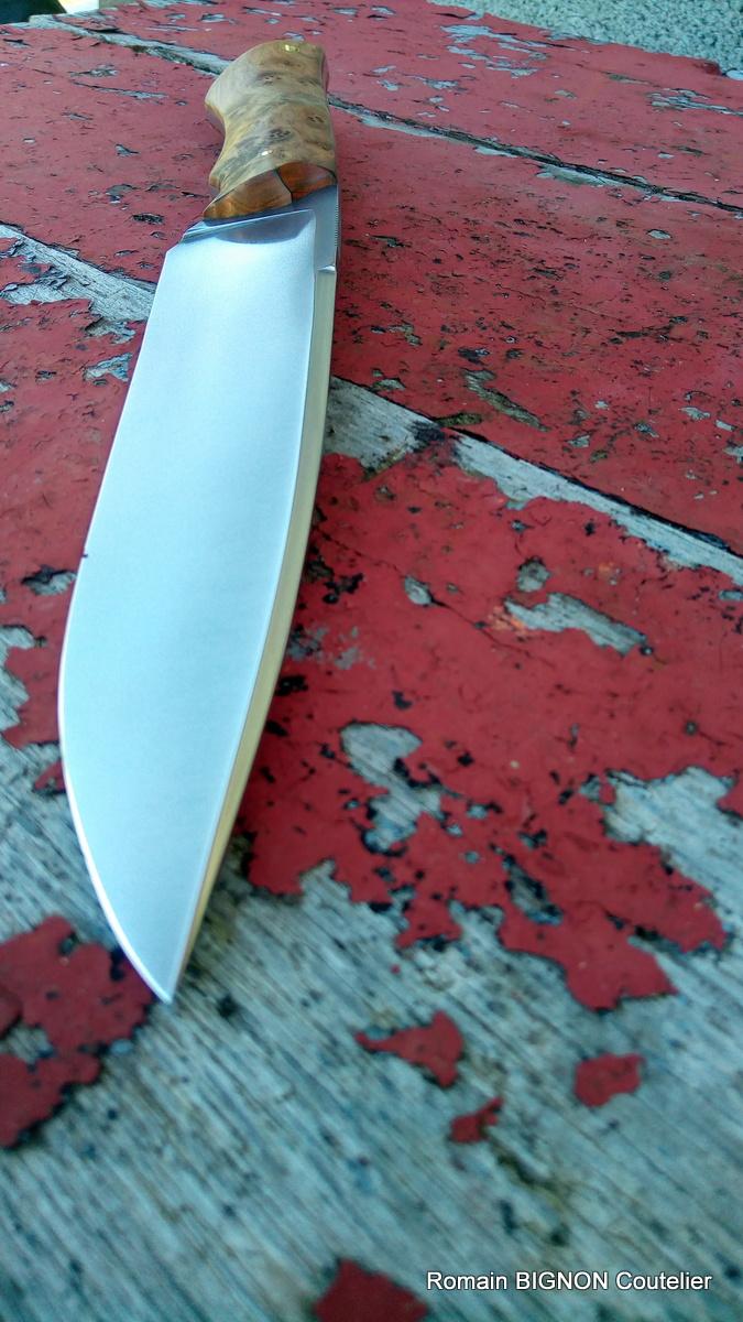 S-couteau droit 14C28N 4mm loupe de thuya (7)