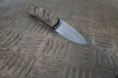 mini BIB N690 Z20 loupe de frene stab (21)