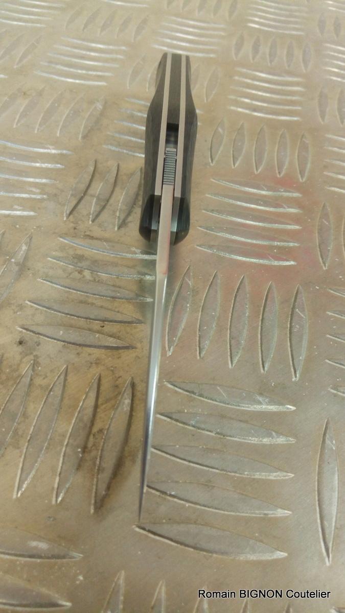 MINIBIB'S EVO 1 fibre de carbone D2 (26)